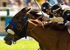 "Magical Fantasy (inside) and Black Mamba, who finished a nose apart in the Santa Barbara, face off again in the Gamely.<br><a target=""blank"" href=""http://www.bloodhorse.com/horse-racing/photo-store?ref=http%3A%2F%2Fpictopia.com%2Fperl%2Fgal%3Fprovider_id%3D368%26ptp_photo_id%3D8018773%26ref%3Dstory"">Order This Photo</a>"