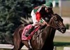 Successful Appeal, winning the 1999 Kentucky Cup Sprint at Turfway Park.