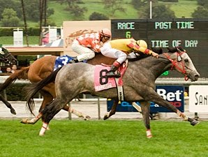 Soldier's Dancer Hits Sunshine Turf Mark