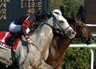 Jambalaya (right) and Silver Whistle meet again in Saturday's Jamaica 'Cap.