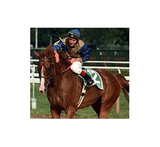 John's Call, after winning the 2000 Turf Classic at age 9.