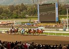 Santa Anita Continues to Look at Surface
