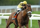 "Wanderin Boy winning the 2006 Brooklyn Breeders' Cup Handicap.<br><a target=""blank"" href=""http://www.bloodhorse.com/horse-racing/photo-store?ref=http%3A%2F%2Fpictopia.com%2Fperl%2Fgal%3Fprovider_id%3D368%26ptp_photo_id%3D6910929%26ref%3Dstory"">Order This Photo</a>"