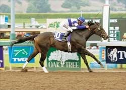 Juvenile Fillies Preview: Free for All