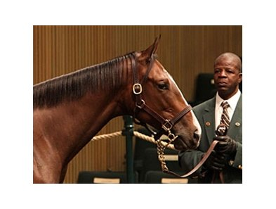Hip 658; filly, Malibu Moon - Erhu by Tactical Cat, brought $700,000 to top day 4 of the Keeneland September yearling sale.