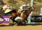 Idiot Proof joins TVG Breeders' Cup Sprint field with Ancient Title win.