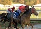 24,836 See Due Post Maryland Million Upset