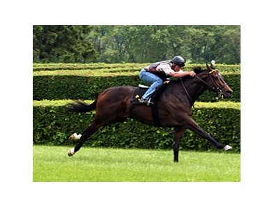 Cannonball works on the River Downs turf on May 24.