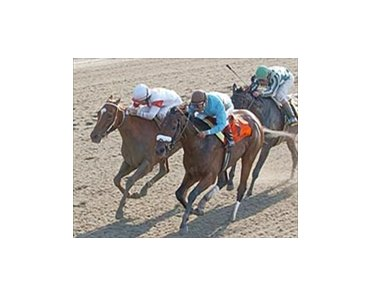 Bird Town, winning the Acorn Stakes.
