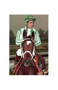 Spain, with Victor Espinoza aboard, after winning the 2000 La Brea.