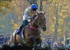 McDynamo returned from an 11-month layoff to win the Breeders' Cup Steeplechase.