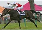 French Derby Winner Lawman Retired