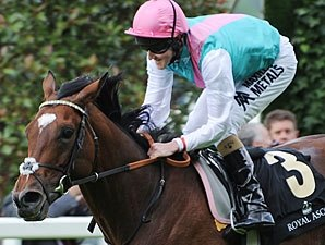 Soft Ground at Ascot Awaits Unbeaten Frankel