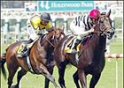 Greek Sun, right, draws away from Laura's Lucky Boy to win the Cinema Breeders' Cup Handicap.