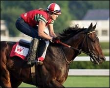 Street Sense Readies for Travers; Curlin Works