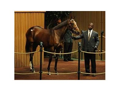 Hip 288 was the early sales-topper, at $1 million, during day 2 of the Keeneland sale.