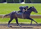 Five Star Day colt from Kirkwood Stables turns in fastest work of Keeneland April under tack show.