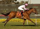 Dubawi Heights Reaches New Peak in Wilshire