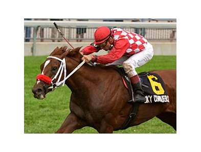Sky Conqueror will enter stud in 2009 Firestone Farms near Caledon, Ontario, Canada.