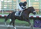 Commentator will make his 2009 debut in the inaugural $1 million Charles Town Classic.