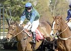 Hirapour in the Royal Chase for the Sport of Kings Hurdle
