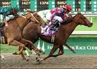Dash of Humor (10) noses out longshot Aly's Vow, rear, to win the Furl Sail Handicap, Sunday at Fair Grounds Race Course.