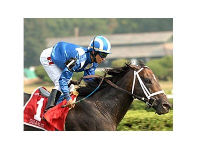 "Shakis<br><a target=""blank"" href=""http://www.bloodhorse.com/horse-racing/photo-store?ref=http%3A%2F%2Fpictopia.com%2Fperl%2Fgal%3Fprovider_id%3D368%26ptp_photo_id%3D2122903%26ref%3Dstory"">Order This Photo</a>"