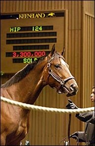 Pulpit colt, sold for Keeneland April record price.