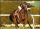 Balto Star, winning  the Red Smith.
