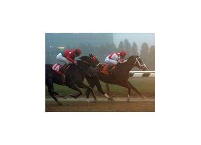 "Half Ours wins first time out after change of ownership.<br><a target=""blank"" href=""http://www.bloodhorse.com/horse-racing/photo-store?ref=http%3A%2F%2Fpictopia.com%2Fperl%2Fgal%3Fprovider_id%3D368%26ptp_photo_id%3D704798%26ref%3Dstory"">Order This Photo</a>"