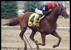 Breeders' Cup Possible for McGaughey's Ky. Cup Winners