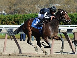 Arena Elvira Gets Grade in Turnback the Alarm