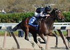 "Arena Elvira powers home to win the notched Turnback the Alarm Handicap.<br><a target=""blank"" href=""http://www.bloodhorse.com/horse-racing/photo-store?ref=http%3A%2F%2Fpictopia.com%2Fperl%2Fgal%3Fprovider_id%3D368%26ptp_photo_id%3D9728622%26ref%3Dstory"">Order This Photo</a>"