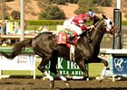 "Bold Chieftain became a millionaire with his win in the California Cup Classic.<br><a target=""blank"" href=""http://www.bloodhorse.com/horse-racing/photo-store?ref=http%3A%2F%2Fpictopia.com%2Fperl%2Fgal%3Fprovider_id%3D368%26ptp_photo_id%3D8530662%26ref%3Dstory"">Order This Photo</a>"