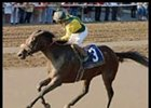 Farda Amiga, winning the Alabama under jockey Pat Day.