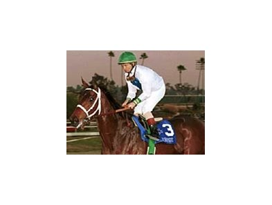 Pat Day rides Surfside following an easy victory in the Grade I Hollywood Starlet Stakes on Dec. 19, 1999, at Hollywood Park.