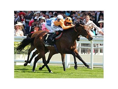 Canford Cliffs in the Queen Anne Stakes.