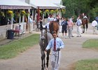 Keeneland a Big Test for Yearling Market