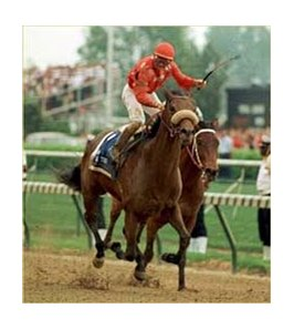 "Jockey Pat Day said this Kentucky Derby victory aboad Lil E Tee ""stands out above all of them."""