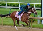 "Lovely Maria worked 5 furlongs in :59 3/5 under jockey Kerwin Clark on April 26.<br><a target=""blank"" href=""http://photos.bloodhorse.com/TripleCrown/2015-Triple-Crown/Kentucky-Derby-Workouts/i-sZZXT5g"">Order This Photo</a>"