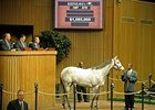 Hip #670, Miss Isella (Silver Charm - La Cucina by Last Tycoon) brought $1.085 million on Day 2 at the Keeneland January horses of all ages sale.