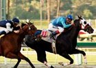Bold Chieftain Conquers Cal Cup Classic; Lava Man 6th Again