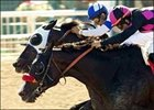 Lava Man Noses Way Into History Books