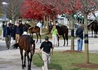 Artie Schiller Filly Paces Keeneland Sale