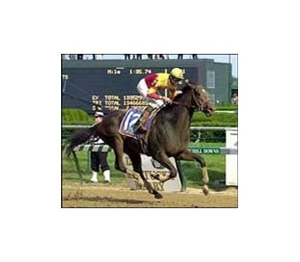 Fusaichi Pegasus, shown winning the Kentucky Derby, could run at Belmont Park Saturday.