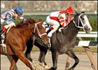 Rockport Harbor, defeating Galloping Grocer in the 2004 Remsen.