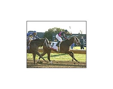 Madcap Escapade was a front-running winner of the Ashland Stakes.