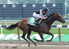 Millionreasonswhy won the Matron at Belmont on July 3.