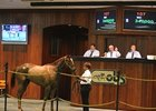OBS February Sale Gross Falls 29.3%