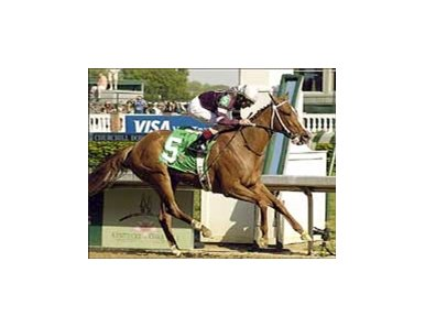 Summerly, winning the 2005 Kentucky Oaks, will close out her career on Thanksgiving Day.